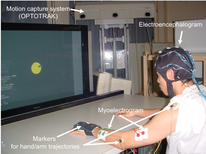 Fig, 1 Simultaneous measurements of human arm trajectory, myoelectrogram, and electroencephalogram.